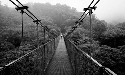 Hanging suspended bridge in Monteverde, Costa Rica