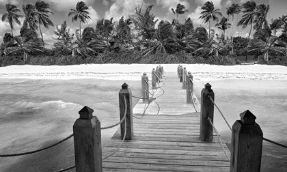 Tropical white sandy beach. Palm leaf roofed wooden pier with gazebo on the beach. Punta Cana, Dominican Republic, black and white.