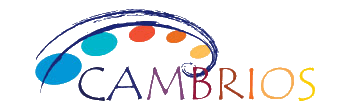 Cambrois | TMF Group case study